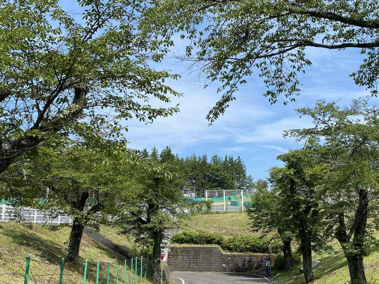 画像: この白い柵や横のガードレールの向こうがコースで囲まれている感じです。