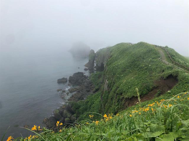 画像1: 開き直って霧多布へ。その名の通り霧ダラケ!