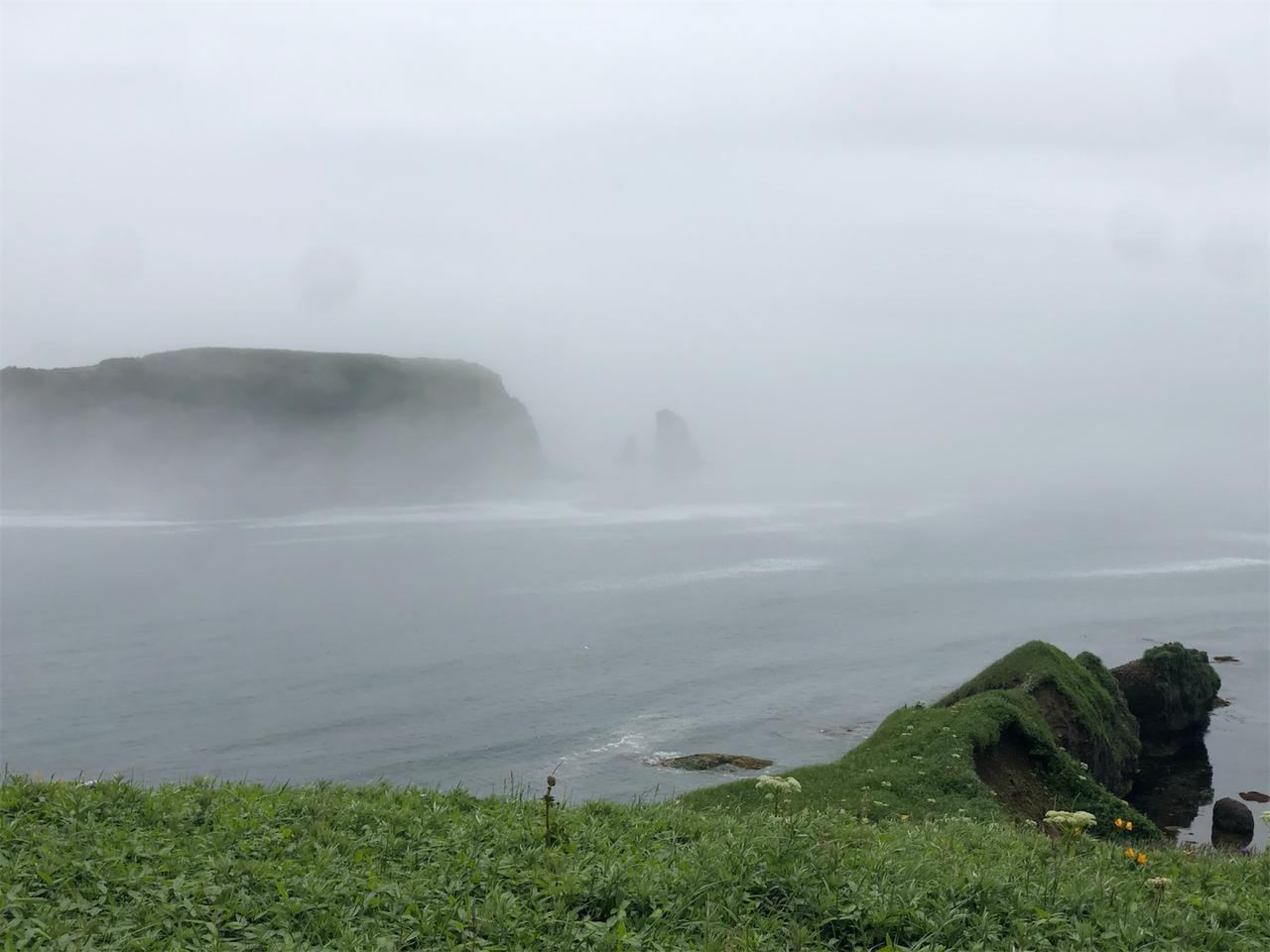 画像3: 開き直って霧多布へ。その名の通り霧ダラケ!