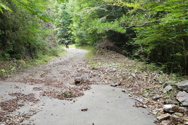 画像4: 目的地は渓流だ。