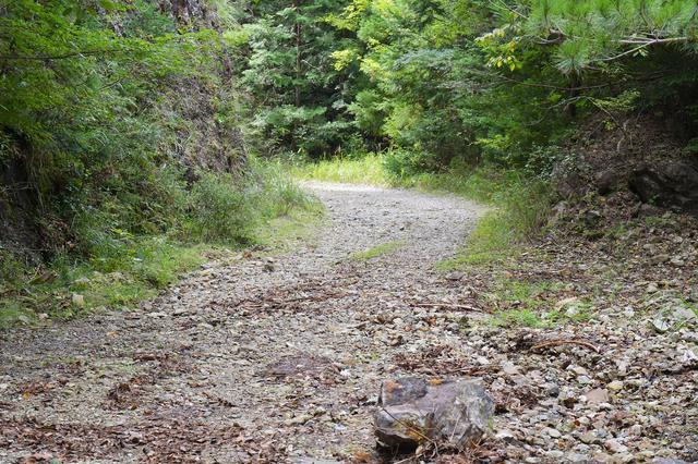 画像5: 目的地は渓流だ。