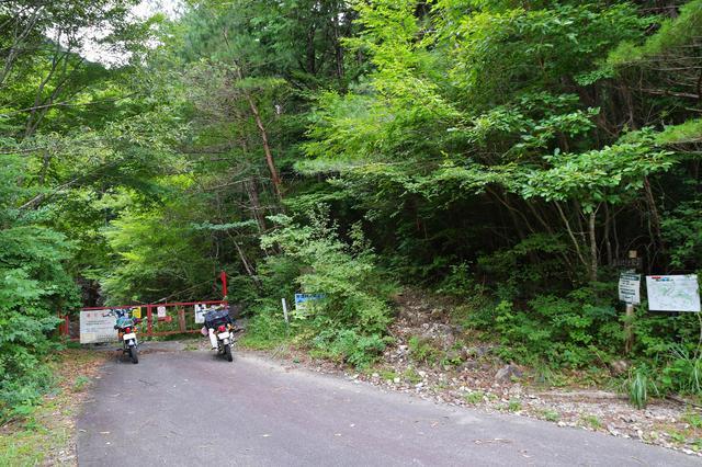 画像1: 林道から渓流に。