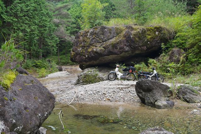 画像2: 林道から渓流に。