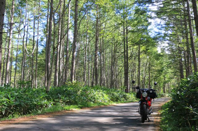画像: 奥志賀からキャンプ場への道の途中。