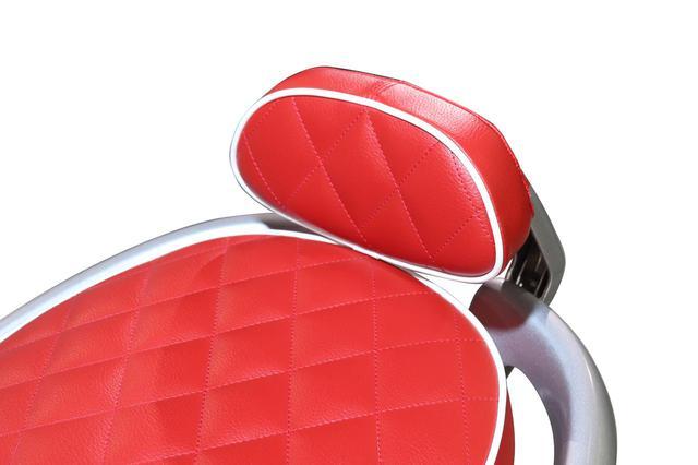 画像: タンデムライダーの快適性と安心感を高めるバックレスト。シートと同素材の表皮を用い、一体感のあるフォルムになっています。