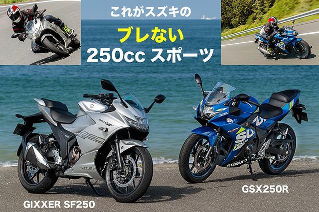 画像: SUZUKI GIXXER SF250 & GSX250R『これがスズキの ブレない250ccスポーツ』 | WEB Mr.Bike