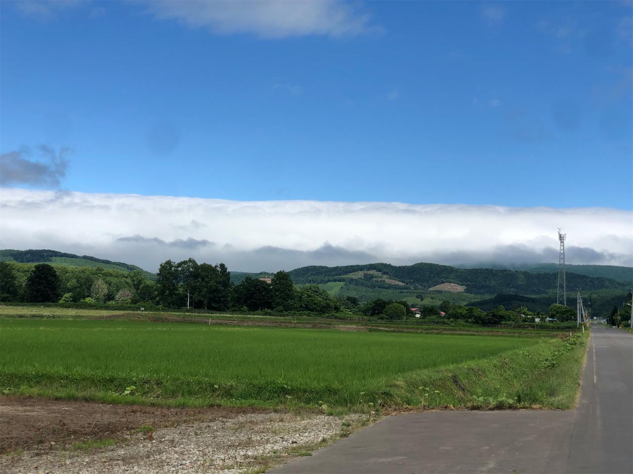 画像1: そして翌朝。晴れはしたが、山は曇天なので引きこもって作業