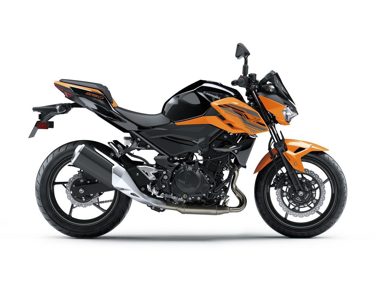 画像13: カワサキが「Z250」の2021年モデルを発売! 2020年モデルと比較してみよう【2021速報】
