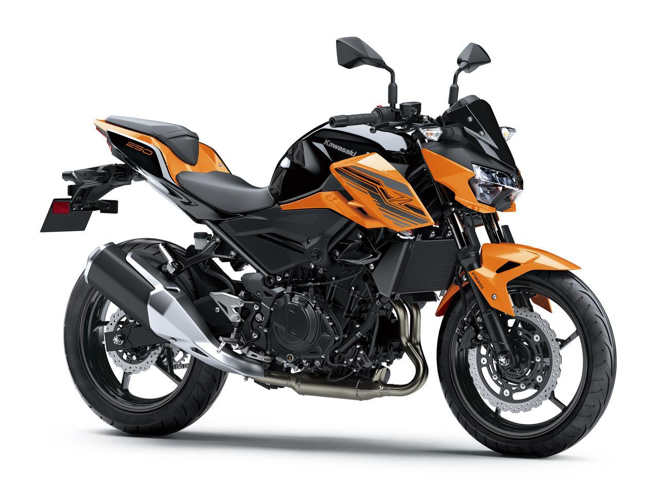 画像17: カワサキが「Z250」の2021年モデルを発売! 2020年モデルと比較してみよう【2021速報】