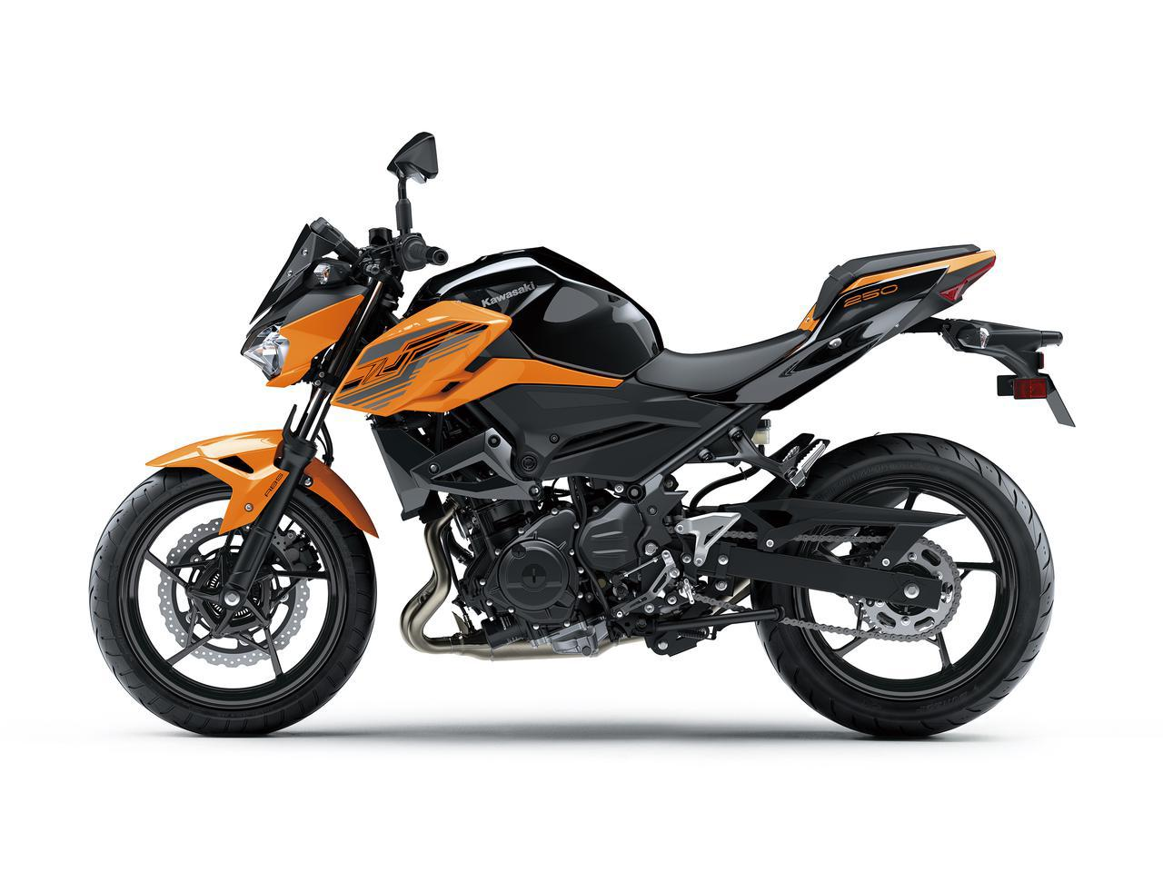 画像12: カワサキが「Z250」の2021年モデルを発売! 2020年モデルと比較してみよう【2021速報】