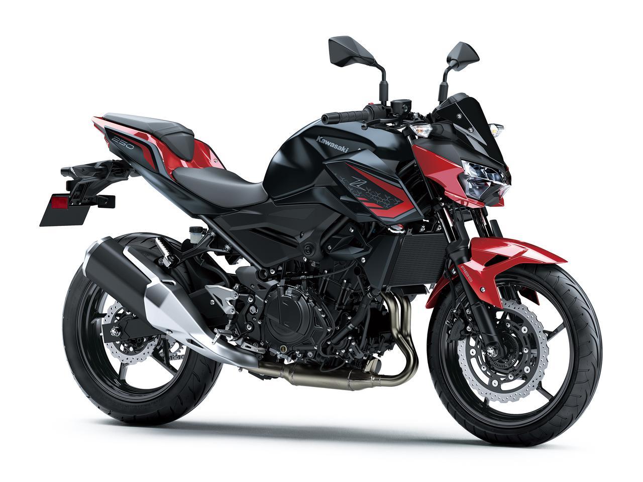 画像15: カワサキが「Z250」の2021年モデルを発売! 2020年モデルと比較してみよう【2021速報】