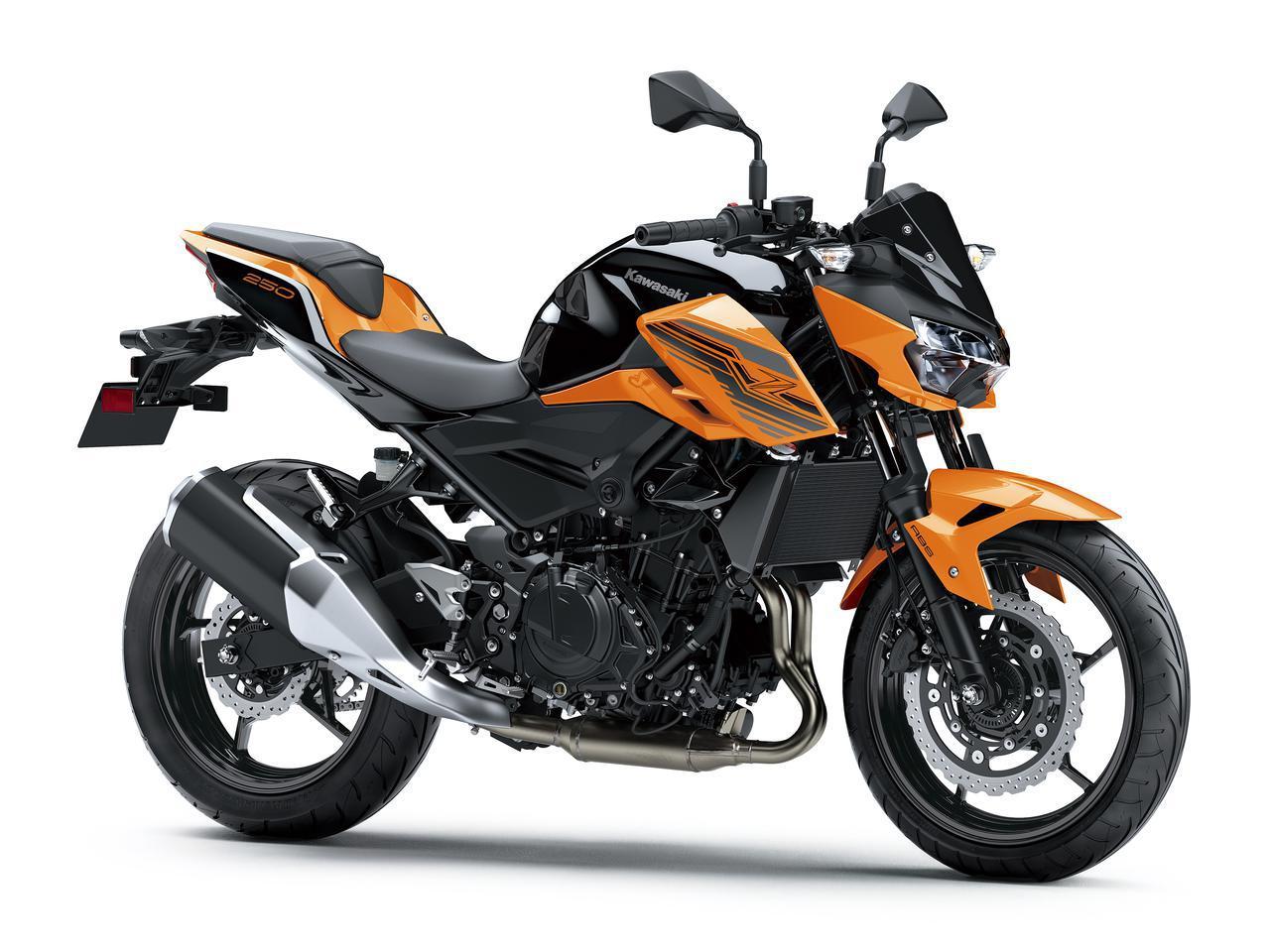 画像11: カワサキが「Z250」の2021年モデルを発売! 2020年モデルと比較してみよう【2021速報】