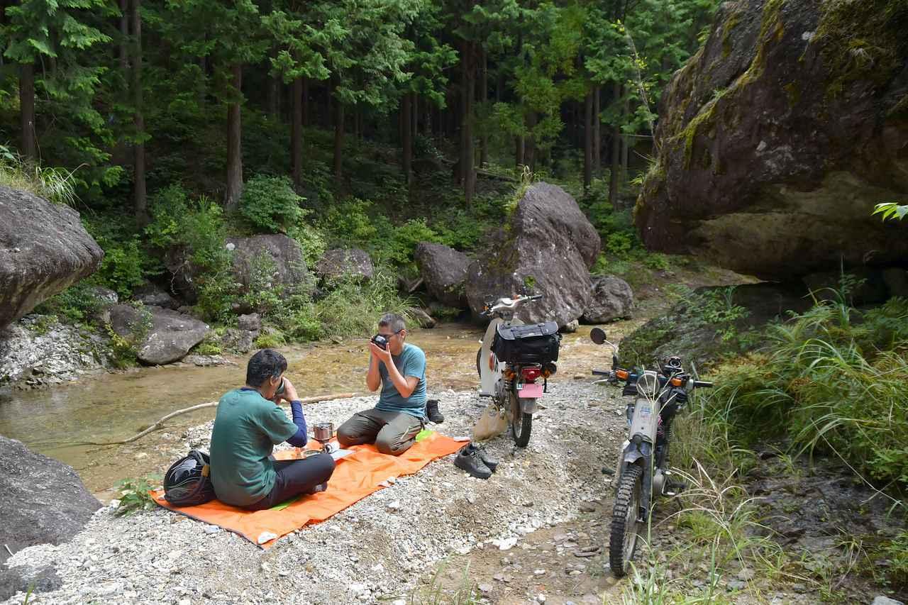 画像: プレスカブとスーパーカブで林道ツーリングをして、林道の奥で野点(のだて)を楽しんで、さらに俳句や川柳を嗜むのだ。 - webオートバイ