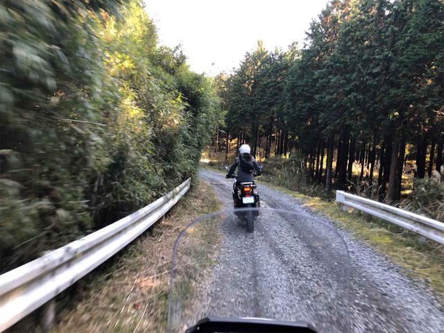 画像2: 主催者がガイドする林道ツーリングにも行ってみた