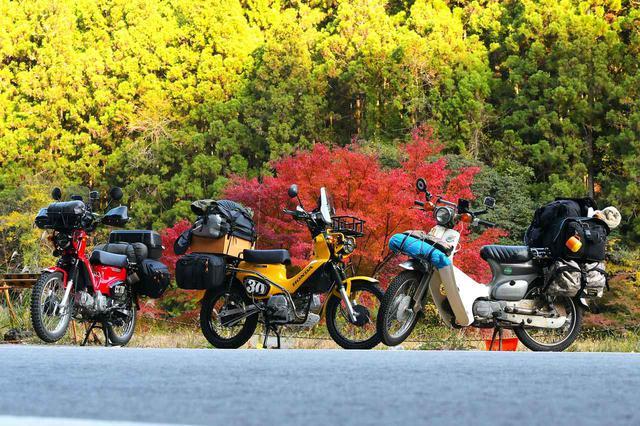 画像: スーパーカブ90とクロスカブ2台で、ヒラメを釣ったり紅葉探したりのキャンプツーリング。 - webオートバイ