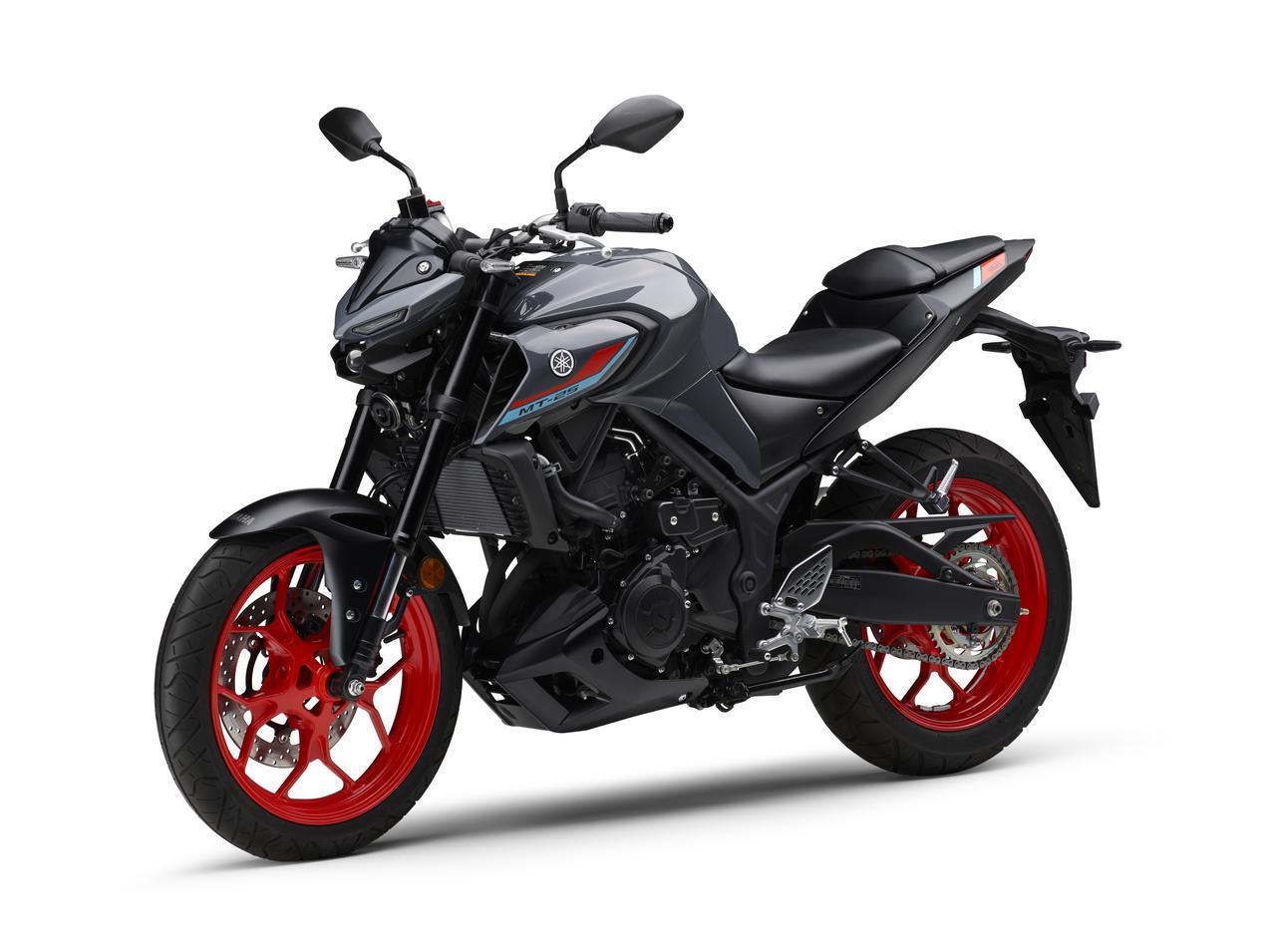Images : 4番目の画像 - 【写真12枚】MT-25 2021年モデル - webオートバイ