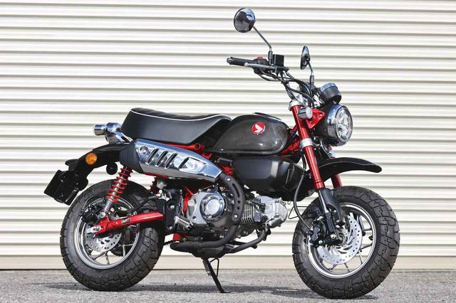 画像: Honda Monkey125 THE CARBON BRED 税込価格:52万5800円