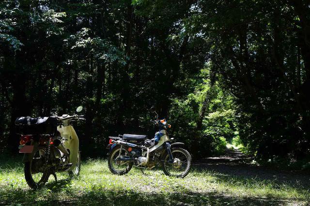 画像: SUPER CUB90とプレスカブで行く。東三河林道ツーリング。 - webオートバイ