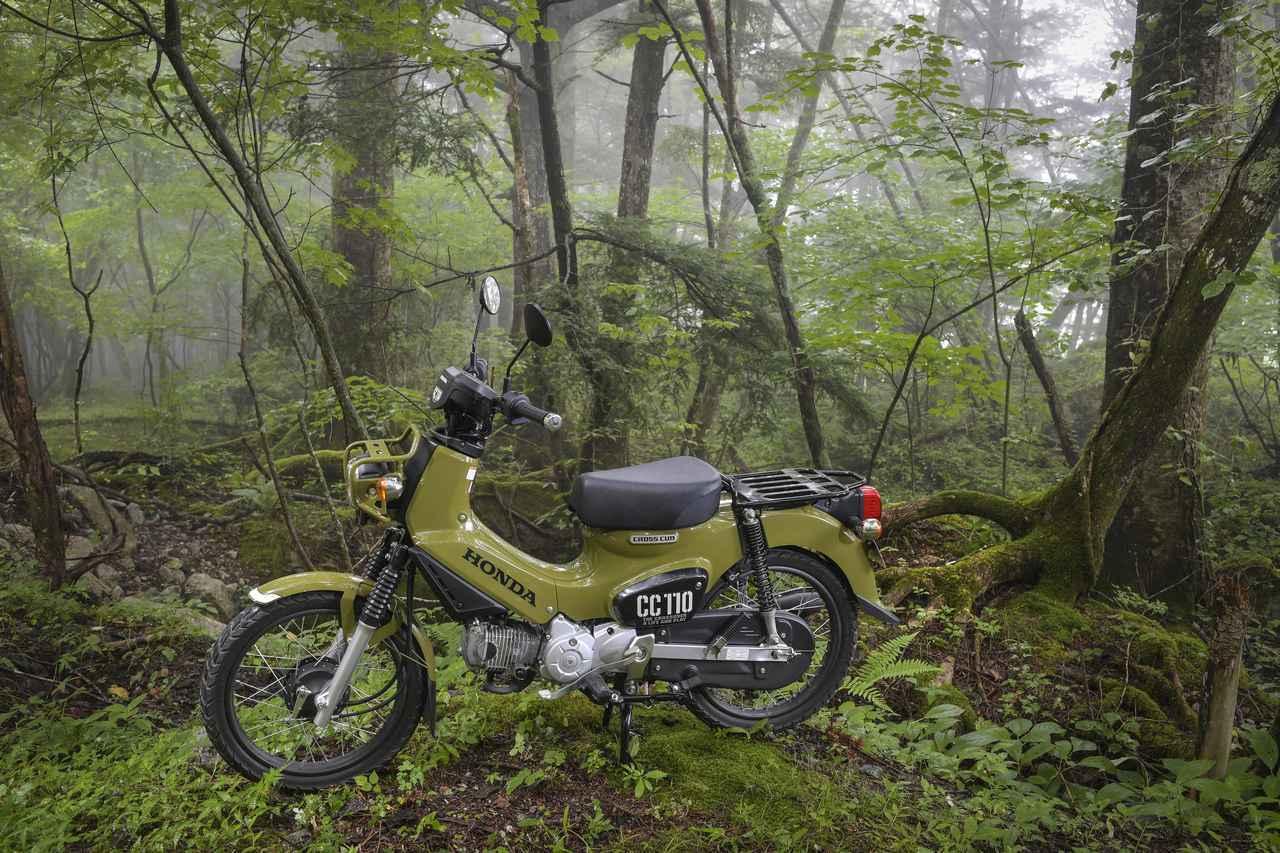 画像: プロカメラマンが撮影した「クロスカブ110」(柴田直行) - webオートバイ