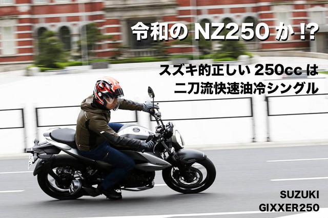 画像: スズキ的正しい250ccは 二刀流快速油冷シングル SUZUKI GIXXER250   WEB Mr.Bike