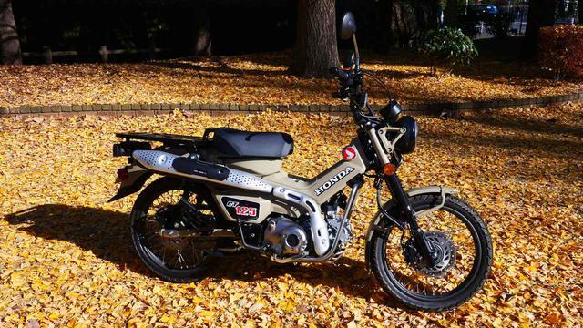画像: 【カスタム】ホンダ「CT125・ハンターカブ」オーナーズインプレ - webオートバイ