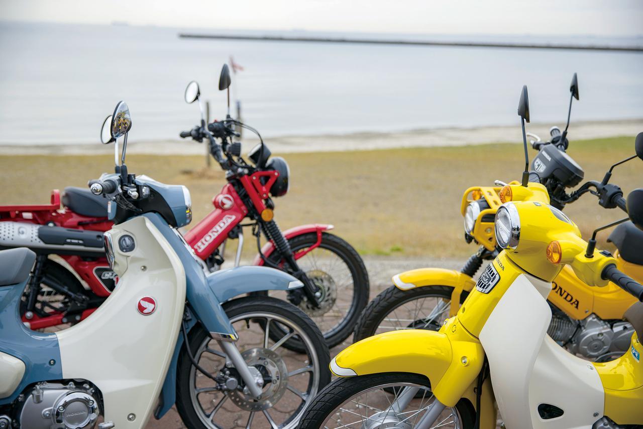 Images : 1番目の画像 - 【写真14枚】カブシリーズ徹底比較 若手ライダートークセッション - webオートバイ