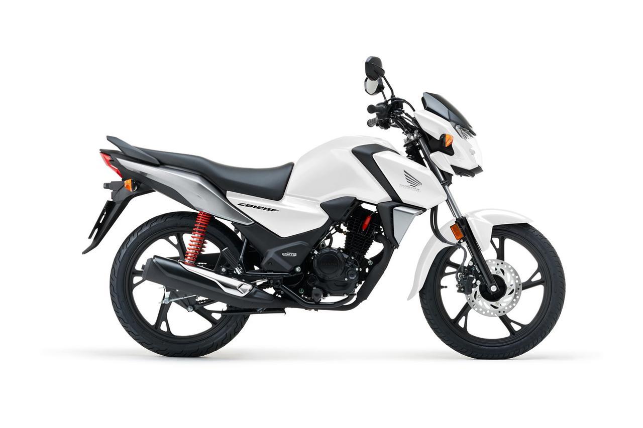 Images : 14番目の画像 - 【写真14枚】ホンダCB125F(欧州仕様・2021年モデル) - webオートバイ