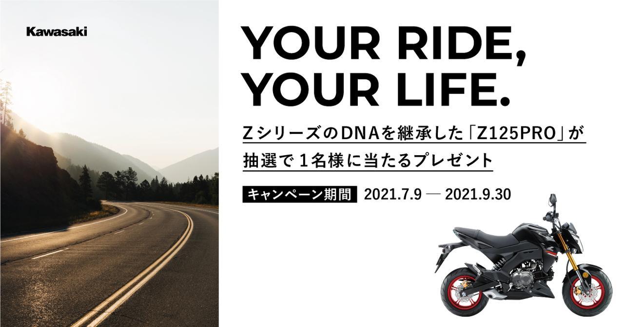 画像: Z125 PROプレゼントキャンペーン|カワサキモータースジャパン特設サイト