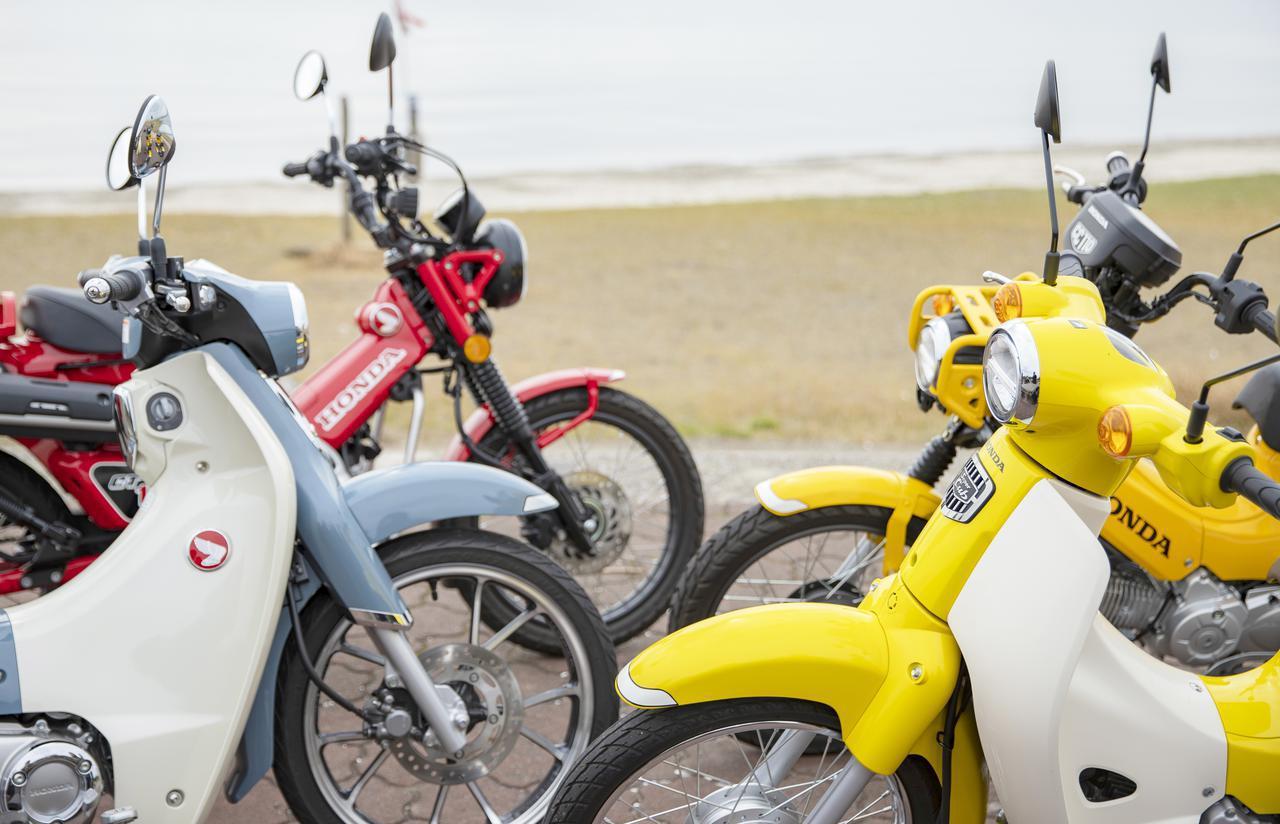 画像: 【原付二種のカブを徹底比較】スーパーカブ110・クロスカブ110・スーパーカブC125・CT125ハンターカブの燃費や装備、価格を比べてみた! - webオートバイ