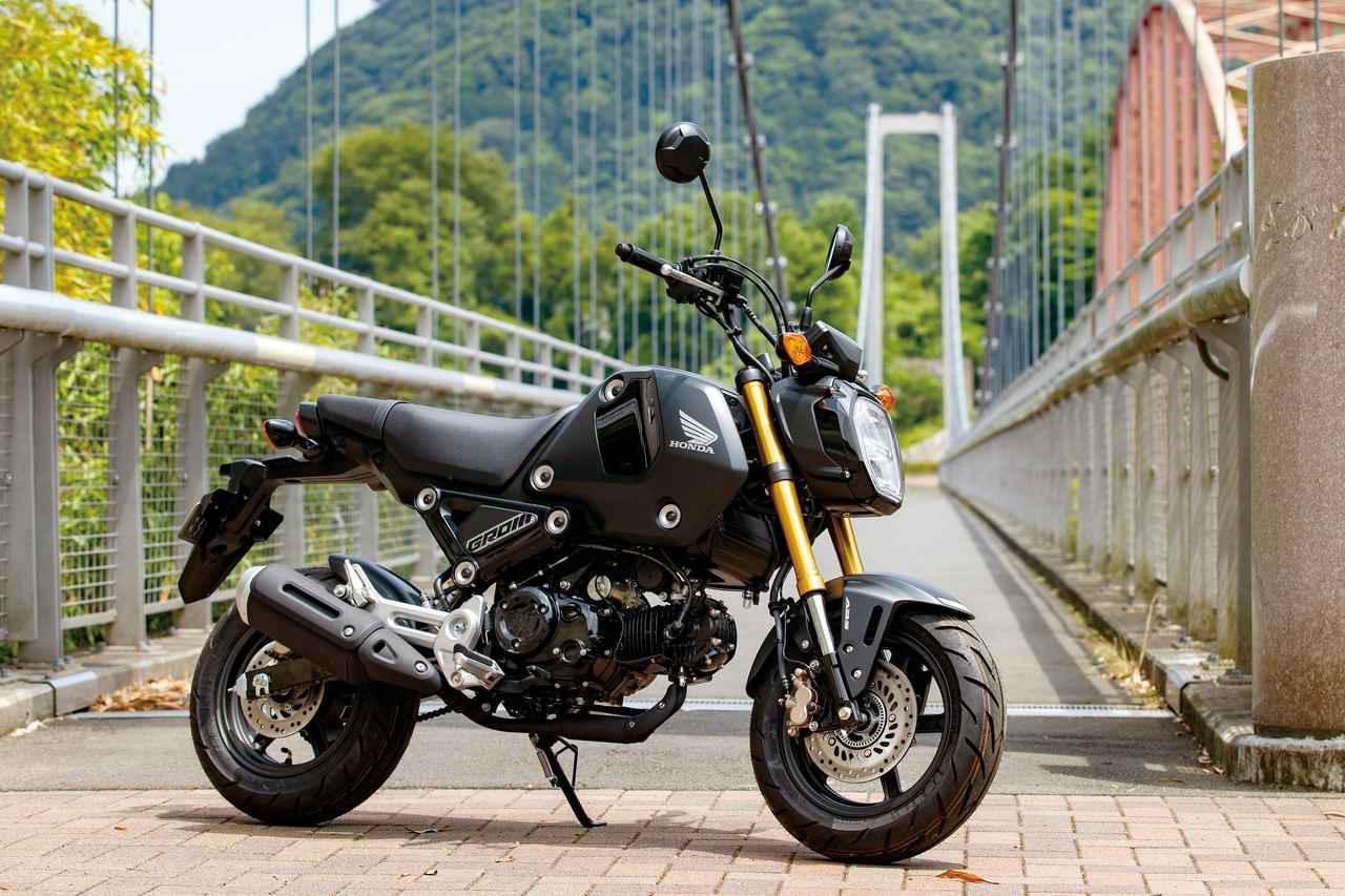 画像: Honda GROM 総排気量:123cc エンジン形式:空冷4ストOHC単気筒 シート高:761mm 車両重量:102kg 税込価格:38万5000円