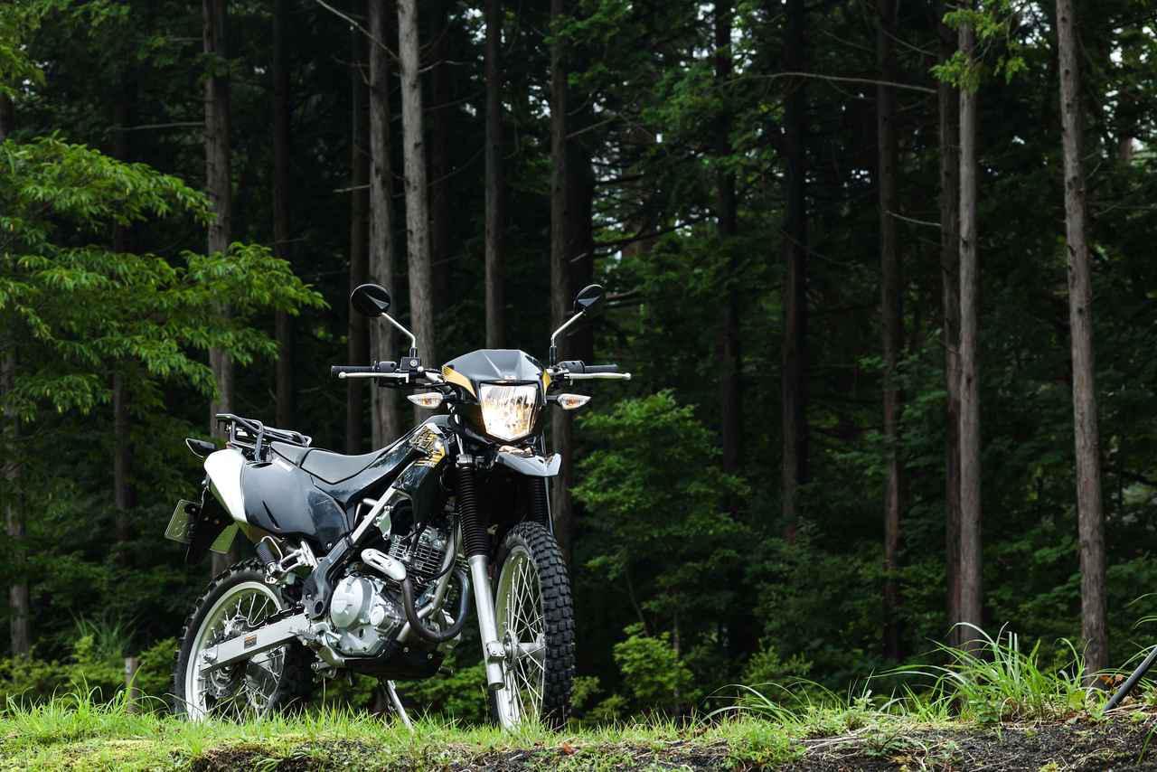 画像3: ガチなオフロード向けかトレッキングバイクか