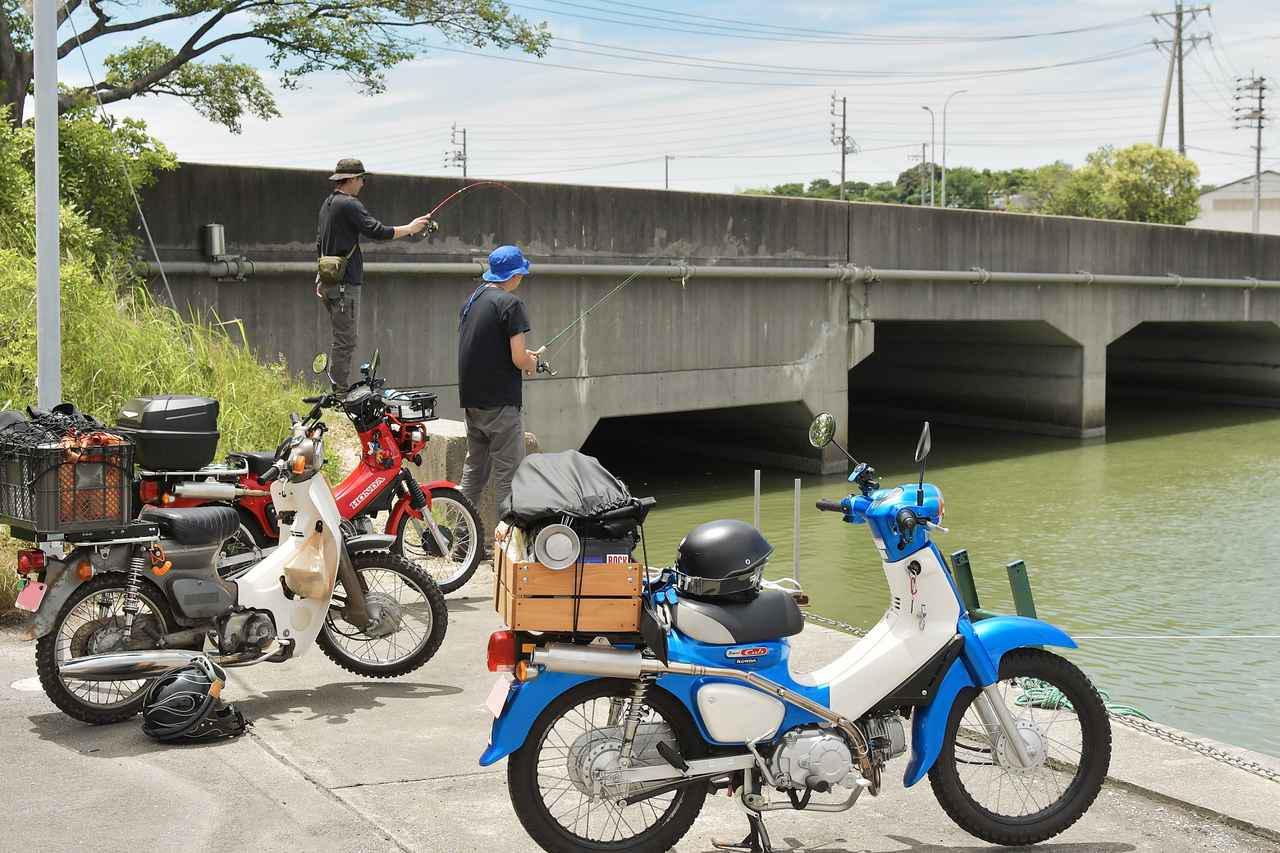 画像: テナガエビを釣ってみたいので、河口に行ってみたよ。 - webオートバイ