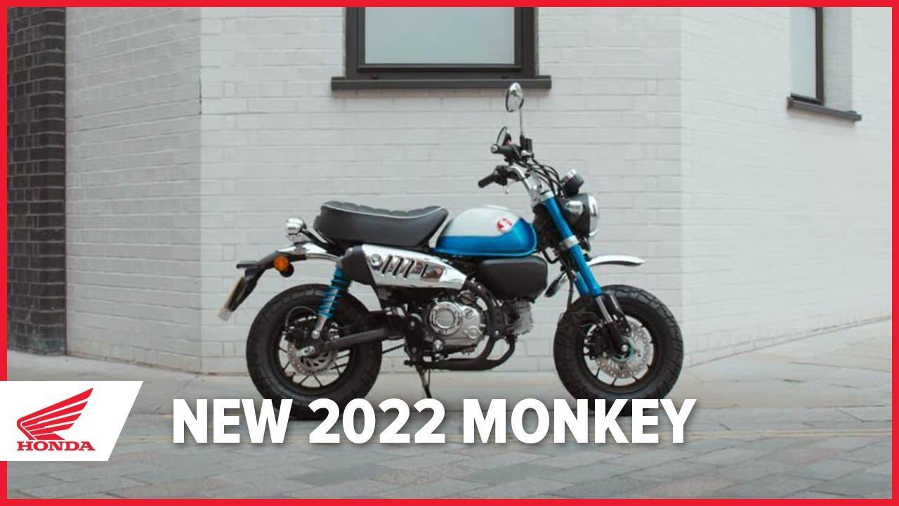 画像: 【欧州ホンダの動画】New 2022 Honda Monkey www.youtube.com