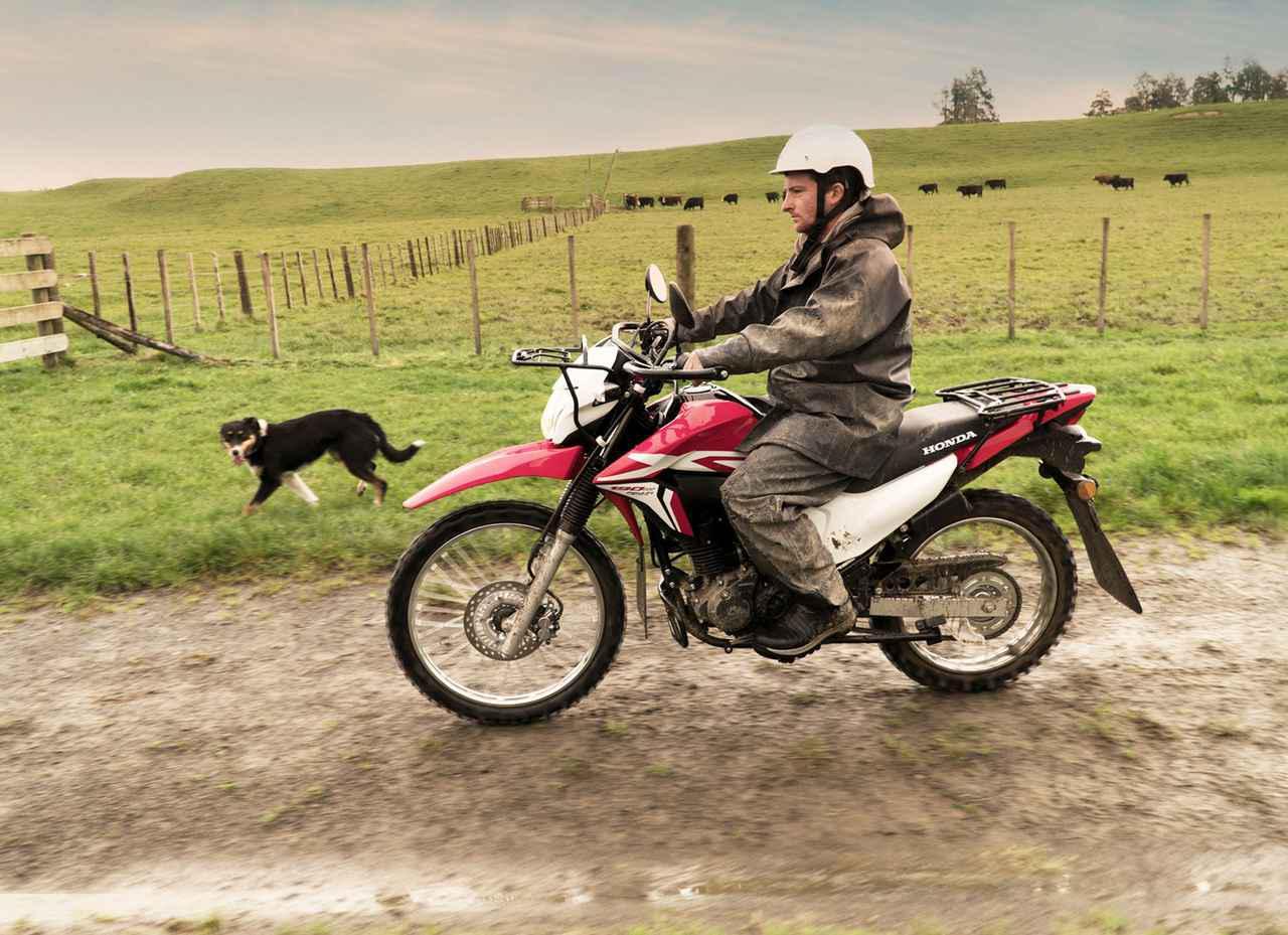 画像: ホンダの「XR」ブランドは過去のものではない! 現行モデルXR190Lとは - webオートバイ