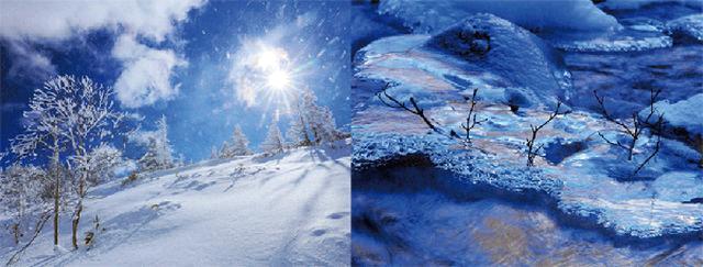 画像3: 「日本の自然美を撮る 米美知子 傑作選-季節の贈り物-」より引用