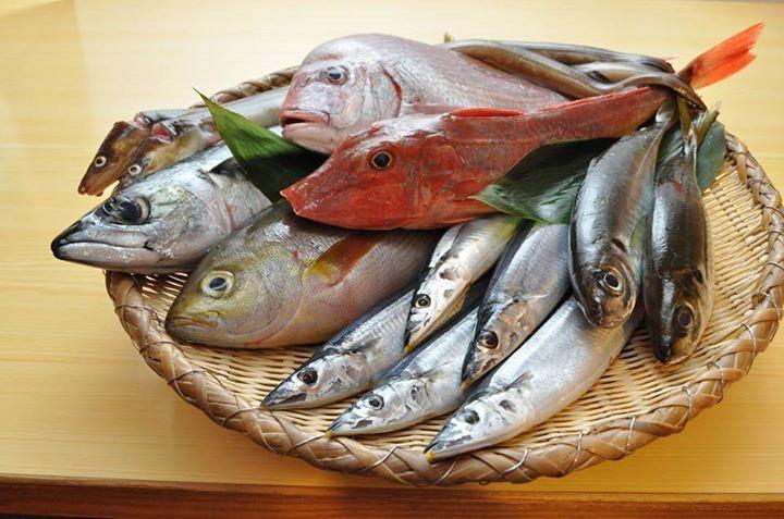 画像: 八面六臂で仕入れることができる鮮魚の例
