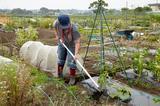 画像: 栽培の原理原則を裏付けるツール