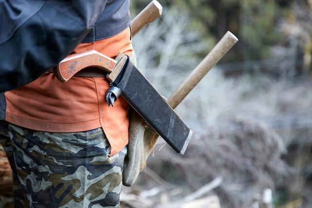 画像: 日本の林業はなぜ衰退したのか