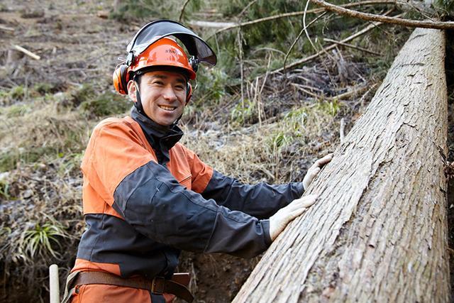 画像: 木こそ、再生可能な資源