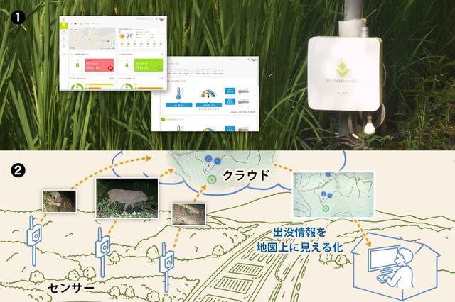 画像: ①農業IoTソリューション e-kakashi *1 *1 e-kakashiはPSソリューションズ株式会社の日本における登録商標です。 ②鳥獣害対策支援サービスのイメージ