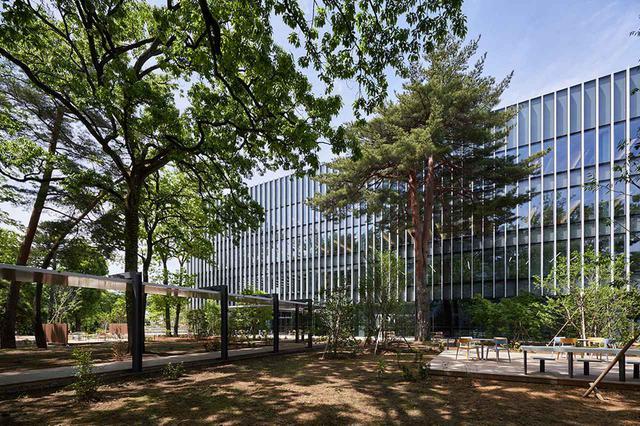 画像: 対談場所となった、日立製作所中央研究所『協創の森』。