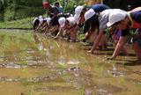 画像: 生態系の保全にITがどう役立つかを検証する 「日立ITエコ実験村」
