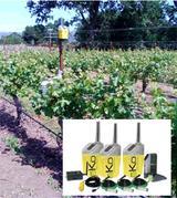 画像: 図1 センサーネットワークの農業への応用 出典:MEMSIC