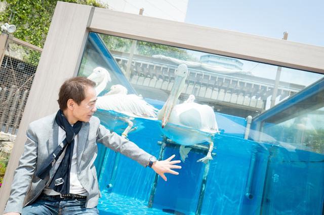 画像3: -最近の水族館には、デートスポットとして人気の高いところが多いと思います。