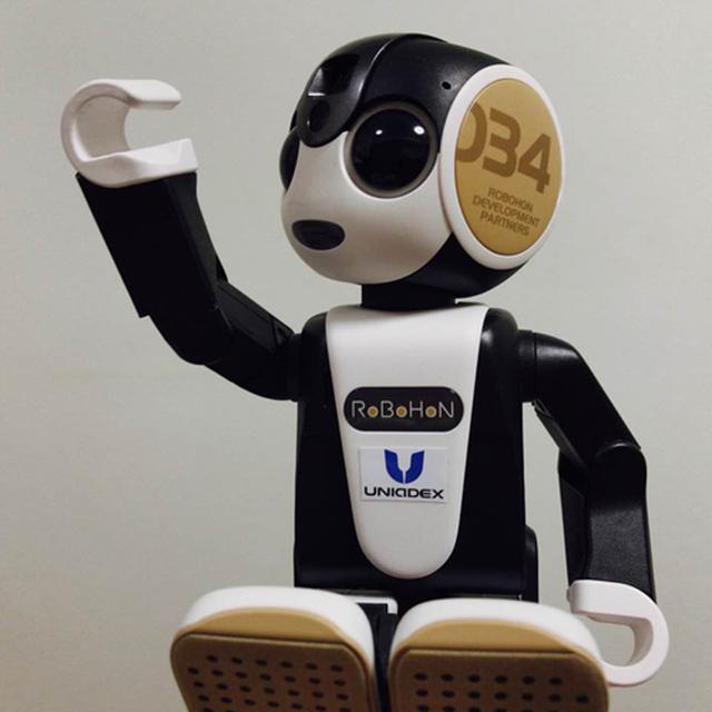 画像: 「ロボホン認定開発パートナー」には、パートナー認定ロゴ・証書・専用ロボホンウェア(耳)(シリアル番号入り)が提供される
