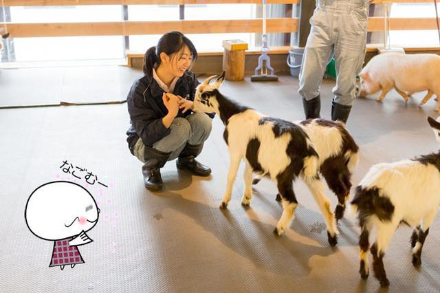 画像: 飼育責任者の峯田さん。優しい笑顔にさらに癒やされます!