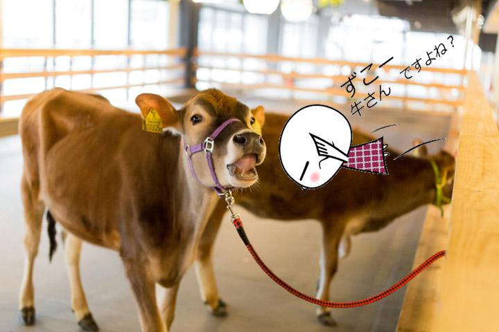 画像3: さてさて、このドアの向こうが牧場ですね! どんな動物に出会えるのでしょうか!!