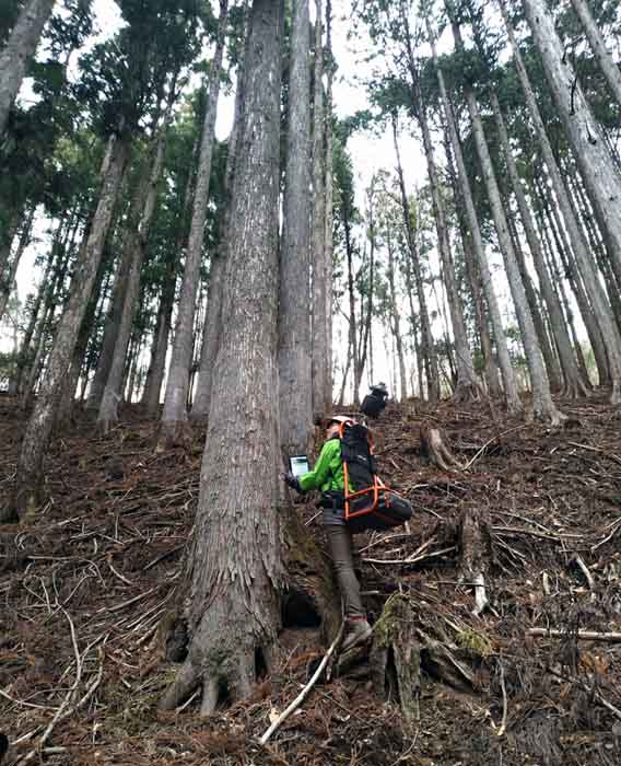 画像: 女性(飯田さん)が背負っているのは、 森林内バックパックレーザーシステム「3D walker」。 背負って森林内を歩くだけで、山の傾斜や起伏、位置、どんな太さや長さの木が生えていているのか、木の種類や幹の状態などのデータを計測できます。30分ほどゆっくり歩けば1ヘクタール分の計測が可能。