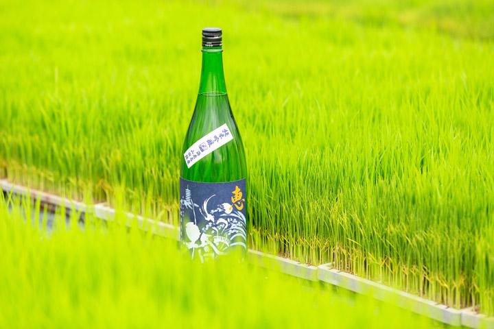 画像: 「恵」青ラベル 純米吟醸ですよー。