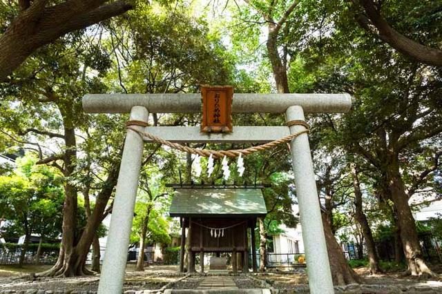 画像: 神社のお杜を囲む高い木々は、お杜を守っているようにみえます。